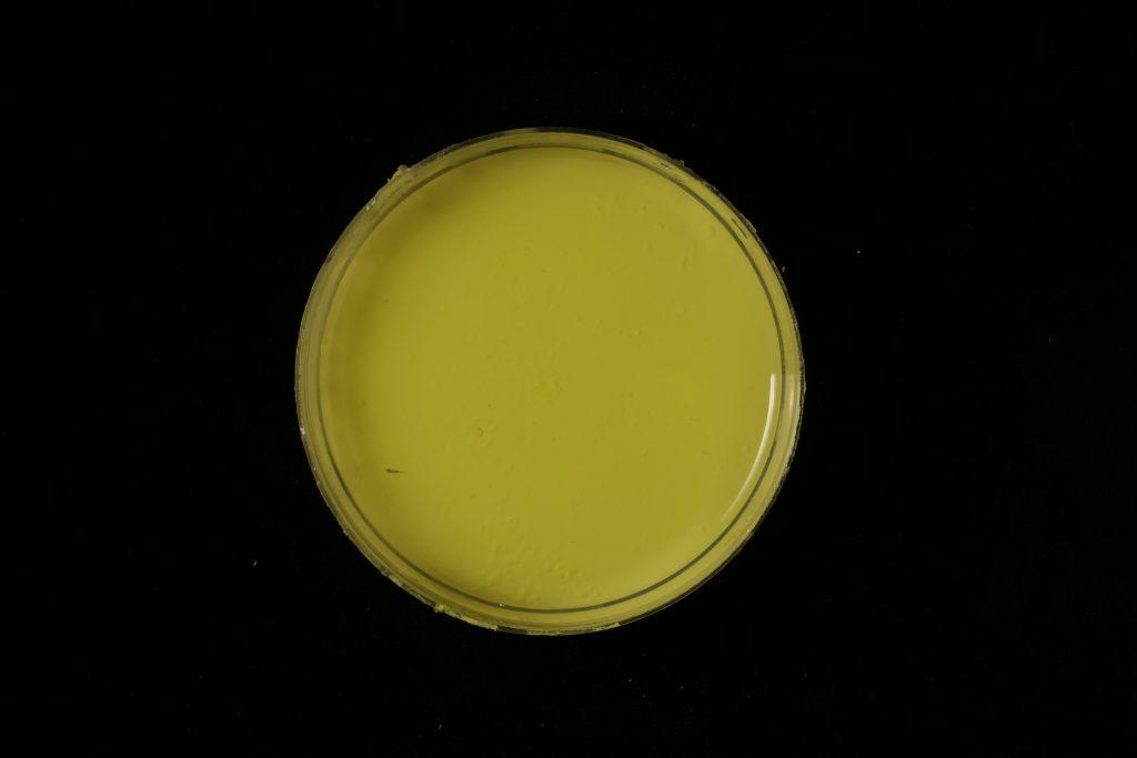 pojidlo: Dispersion 500D (Kremer), pigment: Nickel titan yellow (Kremer)